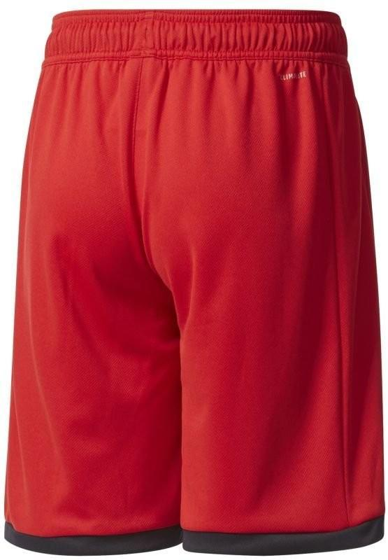 Теннисные шорты детские Adidas B Court Short scarlet/black